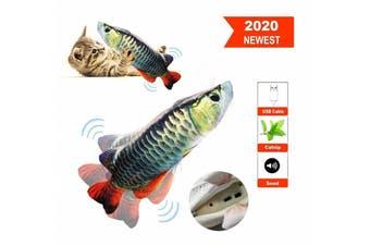 Electric Fish Cat Toy Wagging Fish Realistic Plush Simulation Catnip (Arowana)