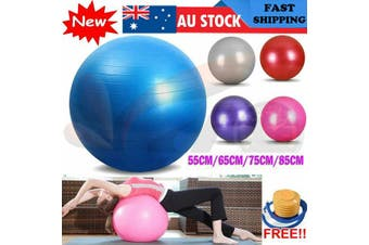 Gym Yoga Ball Home Fitness Exercise Balance Pilates Inflatable 5 Colour 4 Size (55cm Silver)