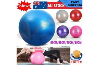Gym Yoga Ball Home Fitness Exercise Balance Pilates Inflatable 5 Colour 4 Size (75cm Silver)