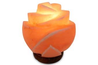 12V 12W Rose Himalayan Pink Salt Lamp Carved Flower Rock Crystal Light Bulb On/Off