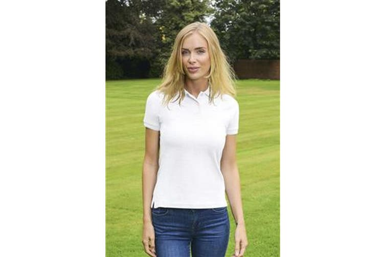 Absolute Apparel Womens/Ladies Diva Polo (White) (XL)