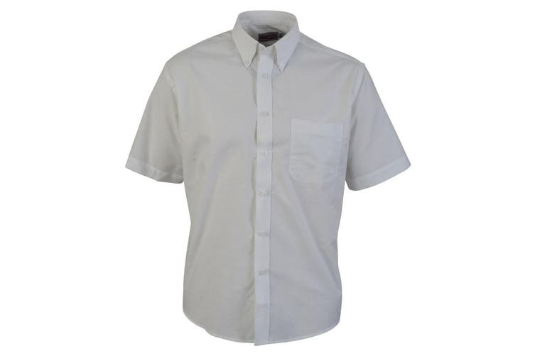 Absolute Apparel Mens Short Sleeved Oxford Shirt (White) (S)