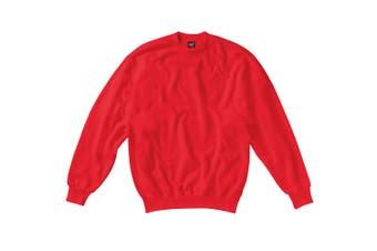 SG Kids/Childrens Crew Neck Sweatshirt Top (Red) - UTBC1068