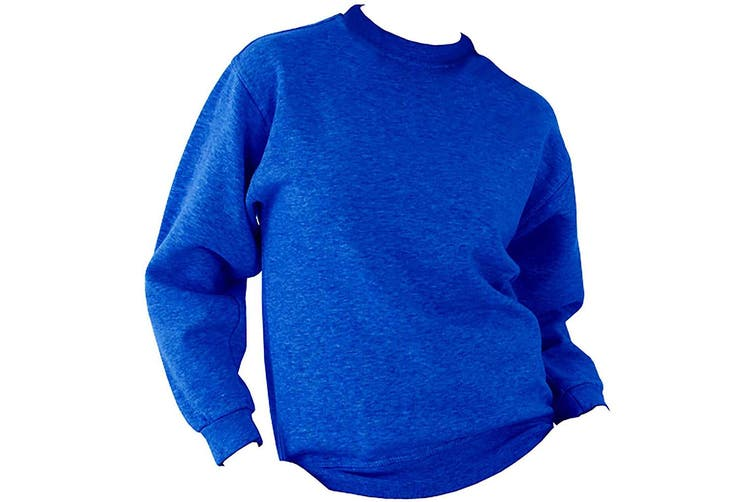 UCC 50/50 Unisex Plain Set-In Sweatshirt Top (Royal) (M)