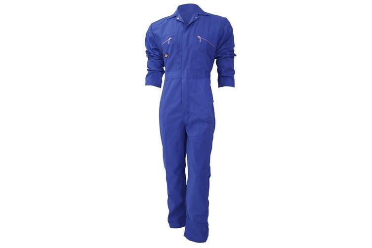 Dickies Redhawk Zip Front Coverall Regular / Mens Workwear (Royal) (44inch)