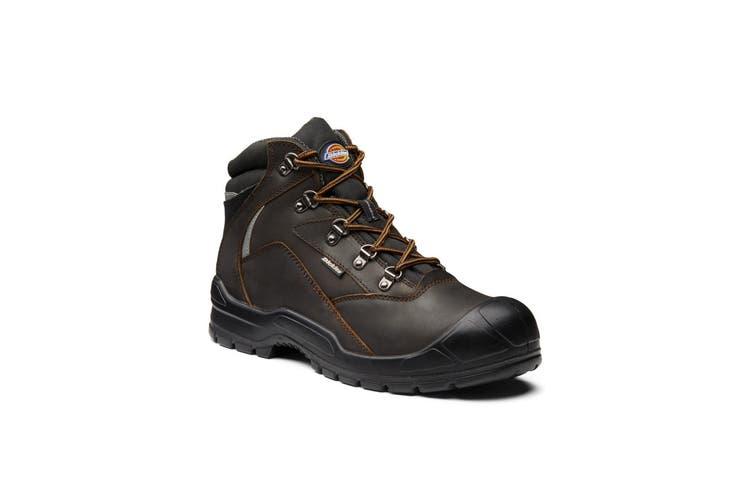 Dickies Mens Davant II Safety Boot (Coffee) (6)