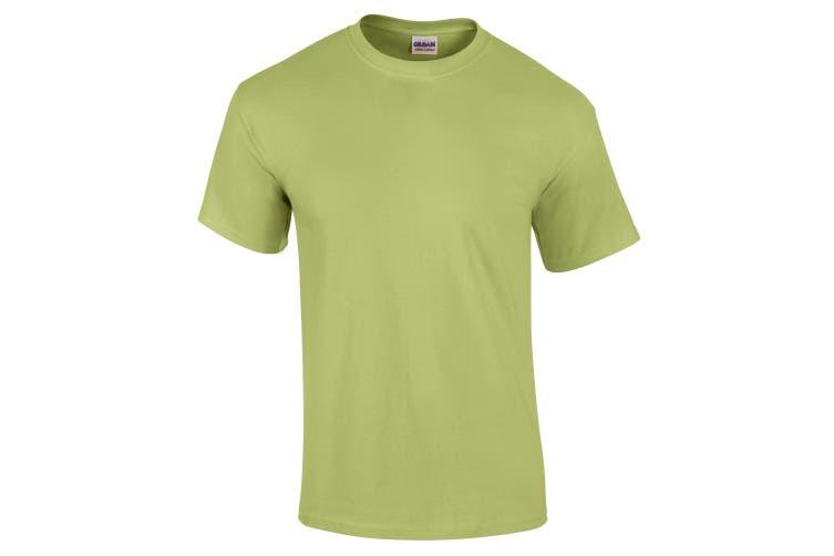 Gildan Mens Ultra Cotton Short Sleeve T-Shirt (Pistachio) (M)
