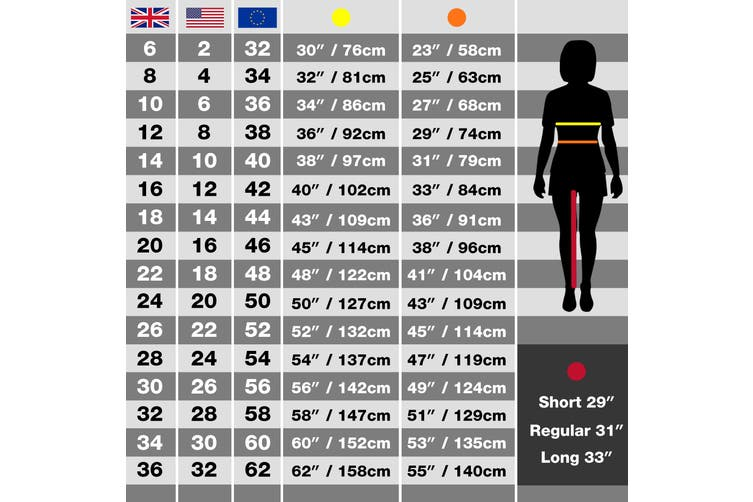 Regatta Ladies New Action Trouser (Short) / Pants (Navy Blue) (12 UK)