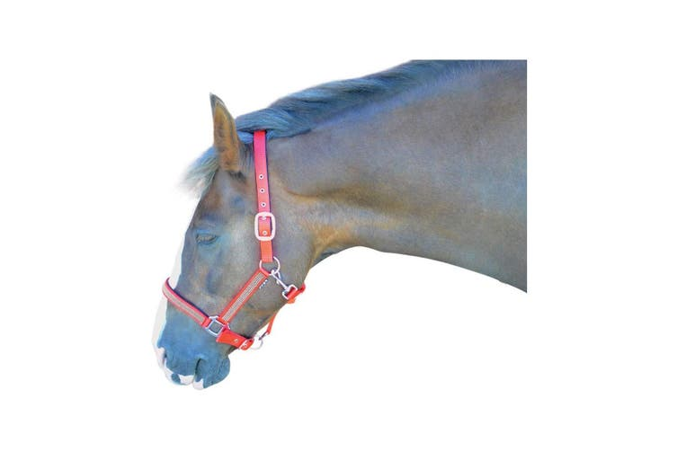 Hy Diamante Head Collar (Pink/Diamante) (Cob)