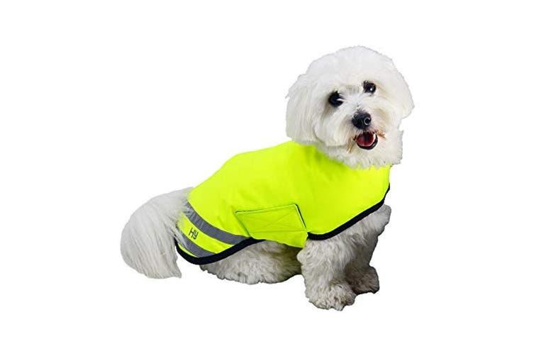 HyVIZ Reflector Waterproof Dog Coat (Yellow) (XXS)