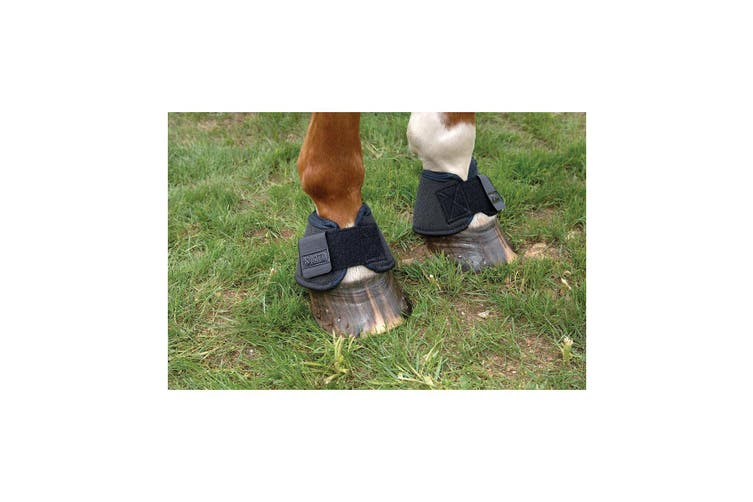 KITT Over Reach Boots (Pack Of 2) (Black) (Pony/Cob)