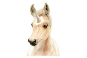 Deckled Edge Eureka Card (Uni-Foal) (One Size)
