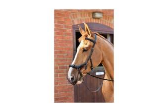Equilibirum Net Relief Muzzle Net for Micklem Bridles (Black) (Cob/Horse)