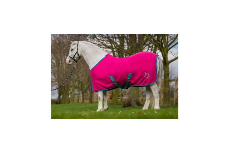 Hy Zeddy Fleece Rug (Flamingo Pink/Turquoise/Cobalt Blue) (4ft 3)