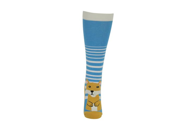 HyFASHION Childrens/Kids Mr Foxy Socks (Pack of 2 Pairs) (Blue/Pink/Orange) (10 Child - 3 UK)