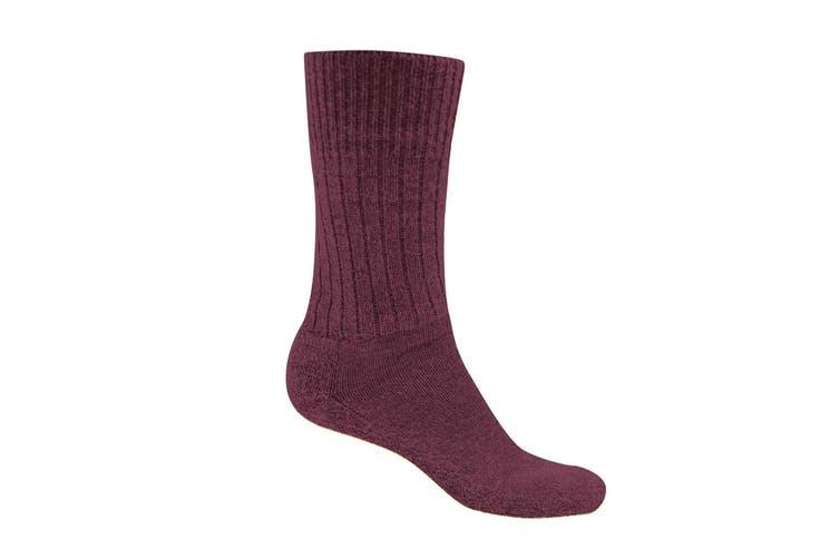 Craghoppers Womens/Ladies Laugton Wool Hiking Socks (Rioja Red Marl) (6-8 UK)