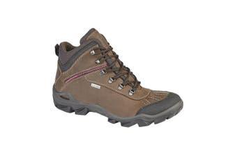 IMAC Womens/Ladies Waterproof Leather Hiking Boots (Brown) - UTDF1687