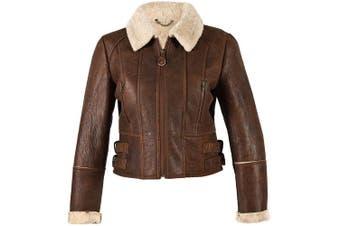 Eastern Counties Leather Womens/Ladies Ella Cropped Sheepskin Flying Jacket (Brick Forest) (12)