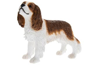 Cavalier King Charles Spaniel (Brown/White) (One Size)
