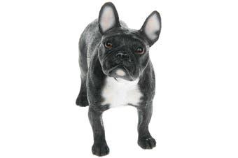 Black French Bulldog Figurine (Black) (13cm)