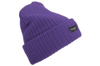 Floso Womens/Ladies Rib Knit Thinsulate Winter Hat (Purple) (One Size)