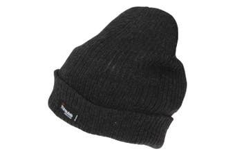 Mens 3M Thinsulate Beanie (Grey) (One Size)