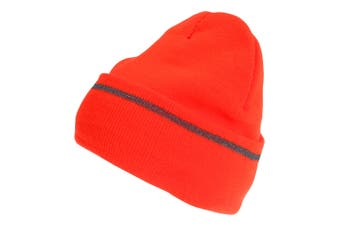 Pro Climate Mens Hi-Vis Reflective Thinsulate Beanie Hat (Orange) (One Size)