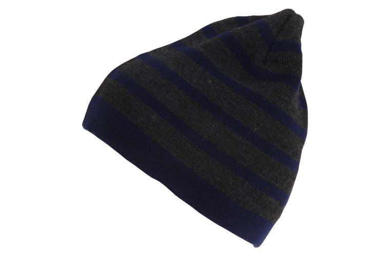 Mens Striped Beanie (Grey/Navy) (One SIze)