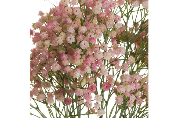 Hill Interiors Artificial Pink Babys Breath Gypsophilia (Pink) (One Size)