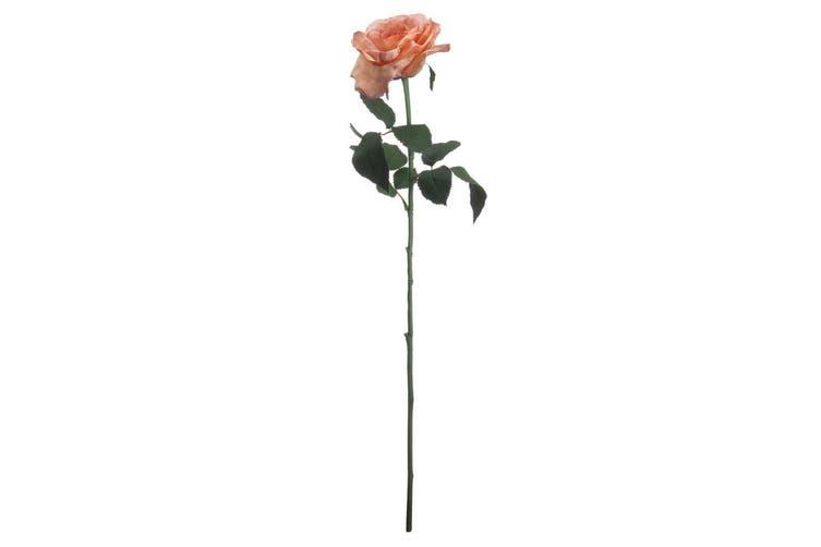 Hill Interiors Artificial Autumn Silk Garden Rose (Peach) (One Size)