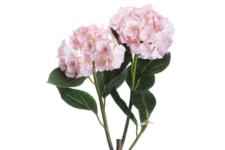 Hill Interiors Hydrangea Spray (Pale Pink) (One Size)