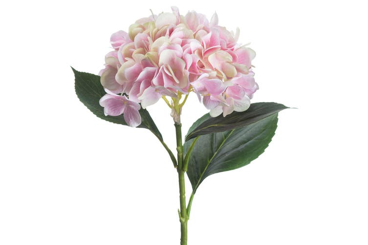 Hill Interiors Classic Hydrangea (Pale Pink) (One Size)