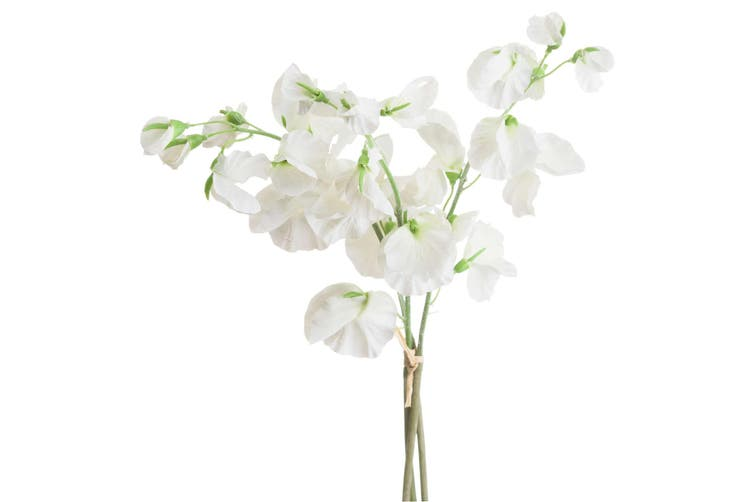 Hill Interiors Sweetpea Bouquet (White) (One Size)