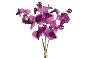 Hill Interiors Sweetpea Bouquet (Purple) (One Size)