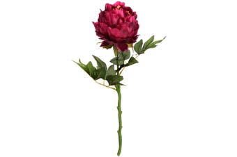Hill Interiors Artificial Peony (Burgundy) (One Size)