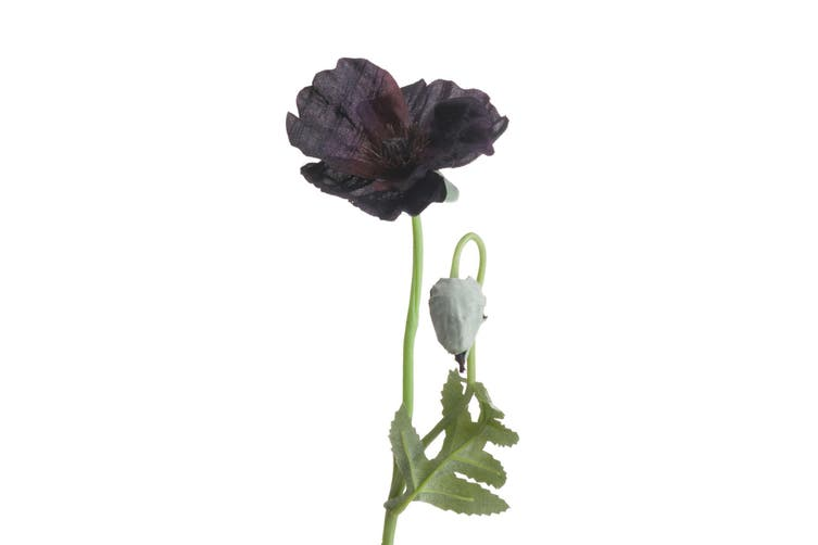 Hill Interiors Artificial Wild Poppy (Black) (One Size)