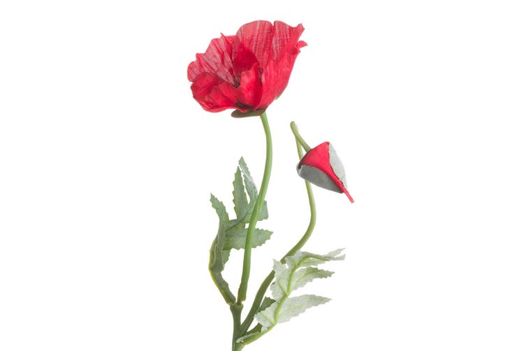 Hill Interiors Artificial Traditional Poppy (Red) (One Size)