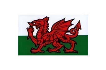 W4 Welsh Dragon Rectangle Sticker (Red/White/Green) (One Size)