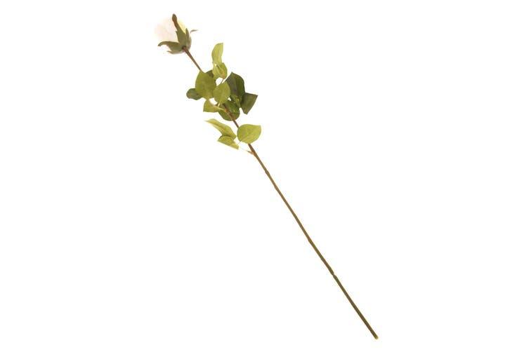British Florist Association Artificial Rose (Cream) (One Size)