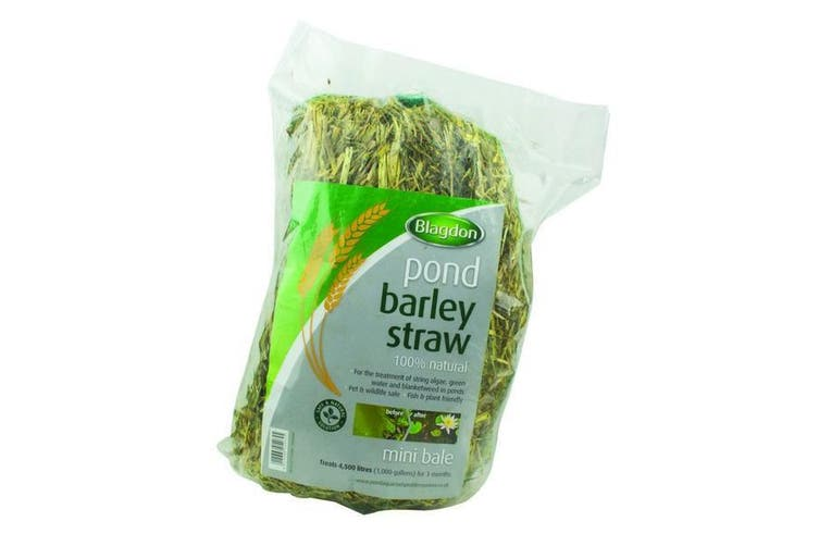 Interpet Barley Straw Mini Pond Bale (May Vary) (One Size)