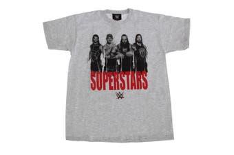 WWE Superstars Childrens Boys Wrestling T-Shirt (Grey) - UTPG119
