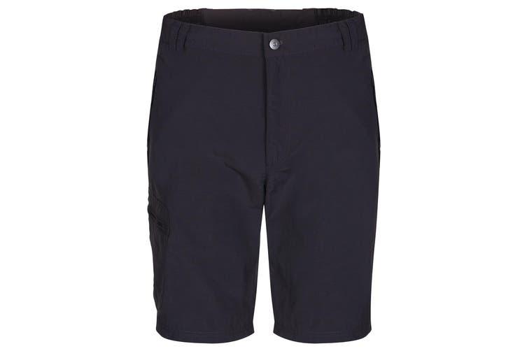 Regatta Great Outdoors Mens Leesville Quick Drying Shorts (Ash) (34)