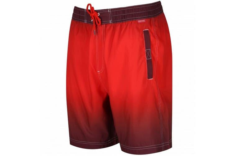 Regatta Great Outdoors Mens Hadden Board Shorts (Warm Mahogany/Amber) (L)