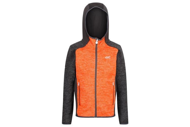 Regatta Childrens/Kids Dissolver II Hooded Fleece (Magnet Grey/Blaze Orange) (9-10 Years)