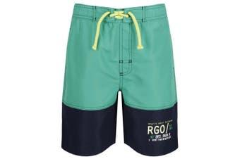 Regatta Childrens/Boys Shaul II Swim Shorts (Jellybean Green/Navy)