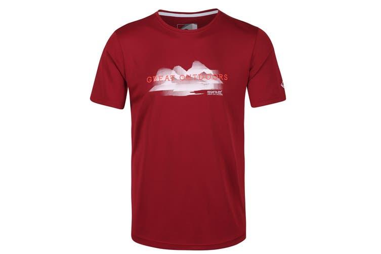 Regatta Mens Fingal V Graphic Active T-Shirt (Delhi Red) (3XL)