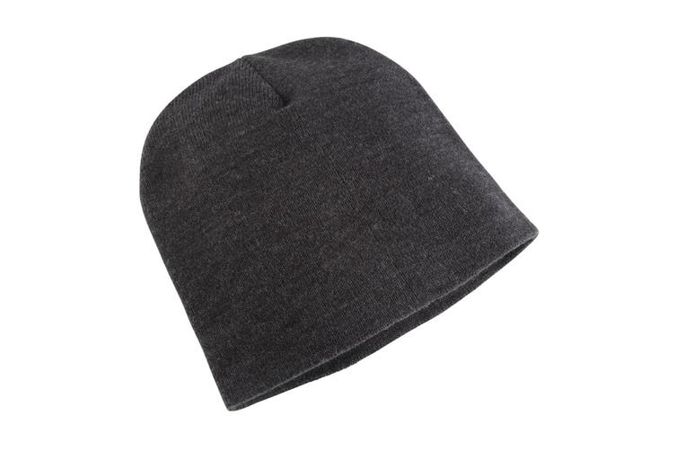 Yupoong Flexfit Unisex Heavyweight Standard Beanie Winter Hat (Charcoal) (One Size)
