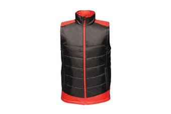 Regatta Mens Contrast Insulated Bodywarmer (Black/Classic Red) (4XL)