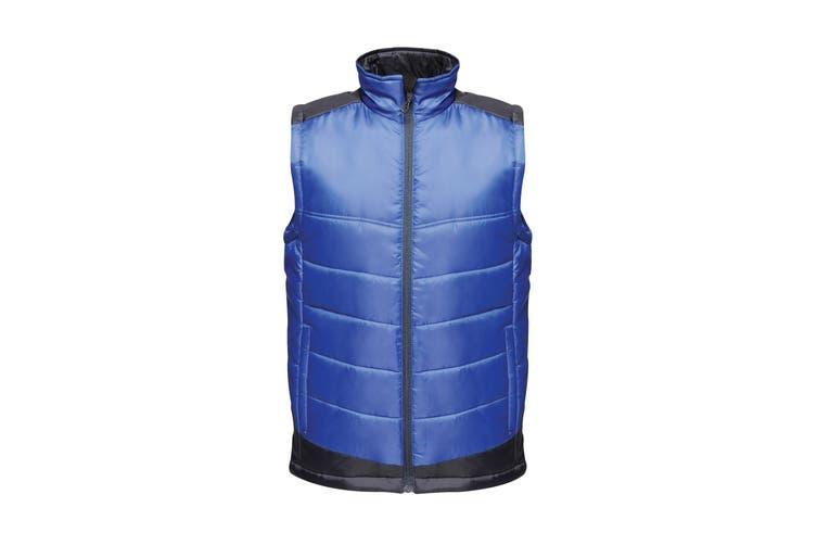 Regatta Mens Contrast Insulated Bodywarmer (New Royal Blue/Navy) (XS)