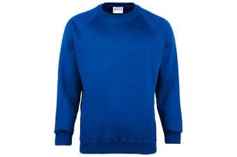 Maddins Kids Unisex Coloursure Crew Neck Sweatshirt / Schoolwear (Pack of 2) (Royal) (36)